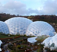 Eden Project by David Wilkins