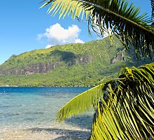 Beautiful beach at Papetoai, Moorea, French Polynesia by Pierre BRUMDER