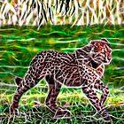 Cub Walk by miroslava