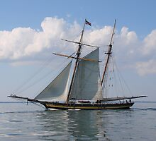 Sailing on the Chesapeake Bay by Timothy Gass