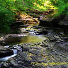 Buttermilk falls 2 HDR by PJS15204