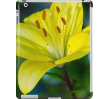 Rise and Shine iPad Case/Skin