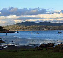 Evening - Tamar River, Tasmania by Ruth Durose