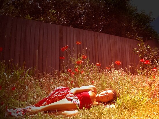 She stumbled behind the rainbow into a field of scarlet blooms by Phoenix-Appeal
