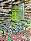 On You`re Bike ! by Colin J Williams Photography