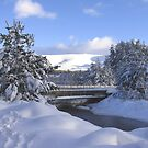 A Bridge in the Snow by jacqi