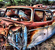 For Sale ...Cheap ~ BoneYard Series  by Carla Jensen
