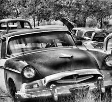 Old Timer 2 ~ BoneYard Series  by Carla Jensen