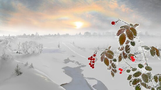 Red by Igor Zenin