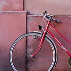 Pink Bike by Walter Quirtmair