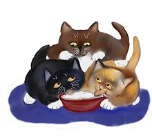 Threes a Crowd around a Yogurt Bowl by NineLivesStudio
