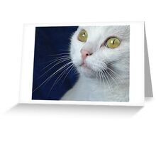 What Big Eyes You Have.... Greeting Card