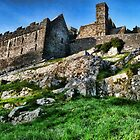 Cashel of the Kings by Brett Williams