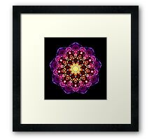 29 MYSTERY ~ I am Courage Framed Print