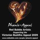 Blazing Heart by Phoenix-Appeal