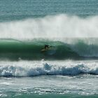 Gisborne Gold by donnz