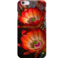 Hedgehog Blossoms in the Morning Light  iPhone Case/Skin