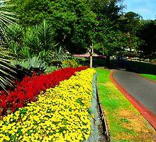 Fitzroy Gardens, Melbourne by reuphiri