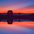 Lake in red blue by Delfino