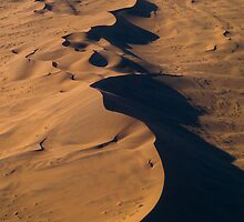 Wandering Dunes - Namibia by Lisa Germany