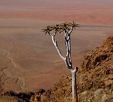 A Precarious Outlook - Namibia by Lisa Germany