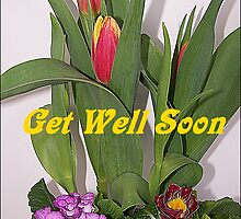 Get Well Soon by Jonice