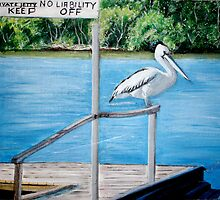 No Boundaries-Pelican-Noosa River by gunnelau