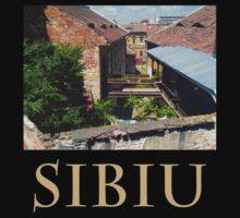 Backyard in Sibiu by Adrian Bud