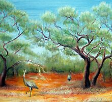emus in the outback by Barbara Cliff