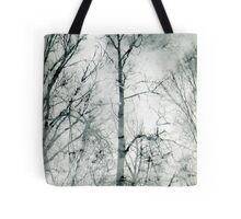 bare trees  #1 Tote Bag