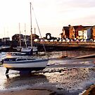 Skerries Harbour by Martina Fagan