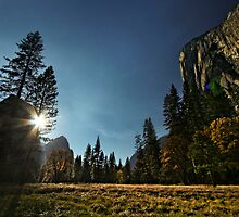 Yosemite Valley by Portia Soderberg