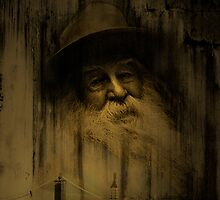 """""""What thoughts I have of you tonight, Walt Whitman..."""" by Mary Ann Reilly"""