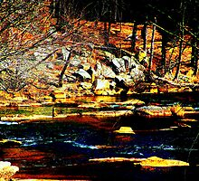 The Banks of Boulders by Lisa Taylor