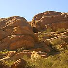 Vasquez Rocks 4 by Bradley Murrell