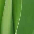 all green by liak