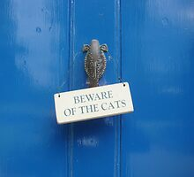 Beware of the Cats by SpencerCopping