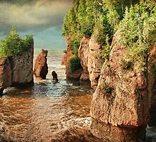 Hopewell Rocks, NB (High Tide) by Amanda White