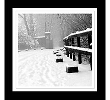 Snowy Lane Photographic Print