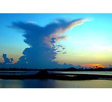 Blue dominance Photographic Print