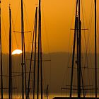 Masts at Dawn by Mick Burkey