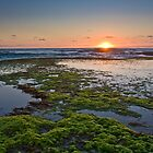 Mornington Peninsula by RyePixels