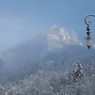 Foggy Fantasy by HelmD