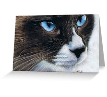 Sapphire Eyes Greeting Card