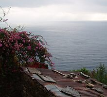 Sea and a tin roof by erwina