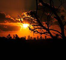 a burning sunset by creative mishmash