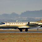Gold Learjet by Hertsman