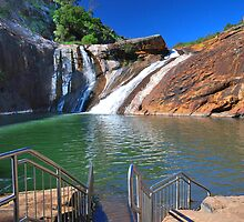 Serpentine Falls by Claire  Farley