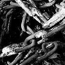 Chains by Catherine Hadler