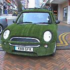Grass Covered Car by James Marshall